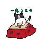 ハチワレ猫の使いやすいかわいいスタンプ(個別スタンプ:05)