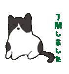 ハチワレ猫の使いやすいかわいいスタンプ(個別スタンプ:09)