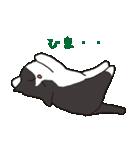 ハチワレ猫の使いやすいかわいいスタンプ(個別スタンプ:13)