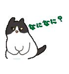 ハチワレ猫の使いやすいかわいいスタンプ(個別スタンプ:14)