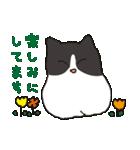 ハチワレ猫の使いやすいかわいいスタンプ(個別スタンプ:15)