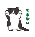 ハチワレ猫の使いやすいかわいいスタンプ(個別スタンプ:16)