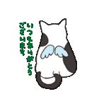 ハチワレ猫の使いやすいかわいいスタンプ(個別スタンプ:20)