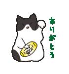 ハチワレ猫の使いやすいかわいいスタンプ(個別スタンプ:22)
