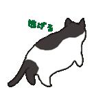 ハチワレ猫の使いやすいかわいいスタンプ(個別スタンプ:23)