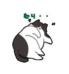 ハチワレ猫の使いやすいかわいいスタンプ(個別スタンプ:28)