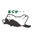 ハチワレ猫の使いやすいかわいいスタンプ(個別スタンプ:29)
