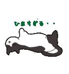 ハチワレ猫の使いやすいかわいいスタンプ(個別スタンプ:33)
