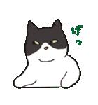 ハチワレ猫の使いやすいかわいいスタンプ(個別スタンプ:36)