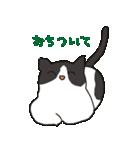 ハチワレ猫の使いやすいかわいいスタンプ(個別スタンプ:38)