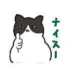 ハチワレ猫の使いやすいかわいいスタンプ(個別スタンプ:39)