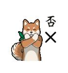 緑バンダナのシバ with Kanji(個別スタンプ:03)