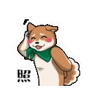 緑バンダナのシバ with Kanji(個別スタンプ:04)