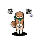 緑バンダナのシバ with Kanji(個別スタンプ:24)