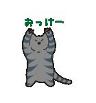 サバトラ猫の毎日使いやすいスタンプ(個別スタンプ:04)