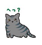 サバトラ猫の毎日使いやすいスタンプ(個別スタンプ:07)
