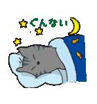 サバトラ猫の毎日使いやすいスタンプ(個別スタンプ:08)