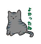 サバトラ猫の毎日使いやすいスタンプ(個別スタンプ:10)