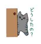 サバトラ猫の毎日使いやすいスタンプ(個別スタンプ:12)