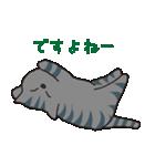 サバトラ猫の毎日使いやすいスタンプ(個別スタンプ:14)