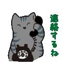サバトラ猫の毎日使いやすいスタンプ(個別スタンプ:19)