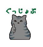 サバトラ猫の毎日使いやすいスタンプ(個別スタンプ:23)