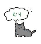 サバトラ猫の毎日使いやすいスタンプ(個別スタンプ:24)