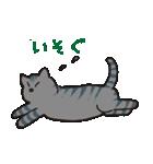 サバトラ猫の毎日使いやすいスタンプ(個別スタンプ:25)