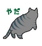 サバトラ猫の毎日使いやすいスタンプ(個別スタンプ:27)