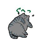 サバトラ猫の毎日使いやすいスタンプ(個別スタンプ:32)