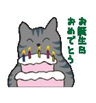 サバトラ猫の毎日使いやすいスタンプ(個別スタンプ:34)