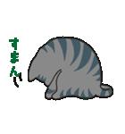 サバトラ猫の毎日使いやすいスタンプ(個別スタンプ:36)