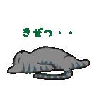 サバトラ猫の毎日使いやすいスタンプ(個別スタンプ:38)