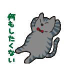 サバトラ猫の毎日使いやすいスタンプ(個別スタンプ:39)
