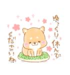 使える2❤️いやしばいぬ❤️13 ダジャレ入り(個別スタンプ:05)