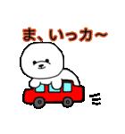 ビションのもちお~スタンプ~(個別スタンプ:31)