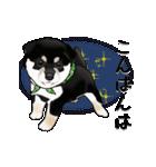 黒豆柴っち(個別スタンプ:4)