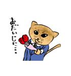 紳士な猫(個別スタンプ:14)