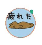 デカ文字 キジトラ猫のよく使う言葉 丸形(個別スタンプ:21)