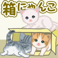 [LINEスタンプ] 箱にゃんこ