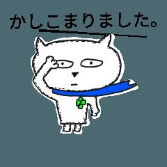 青いマフラーたまちゃん2