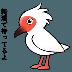 新潟名物シリーズ③ トキちゃん