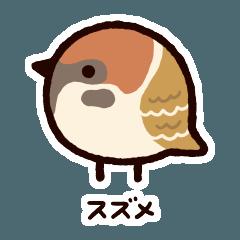 日本の小鳥