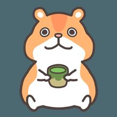 茶ムスター