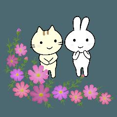 ネコとウサギ。まいにち言葉。