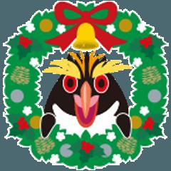 クリスマスと年末に使えるイワトビペンギン