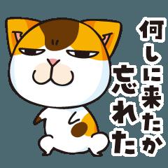 よく使うまめ猫スタンプ