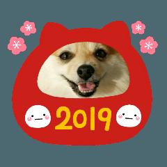 ポメラニアンもなかの年賀スタンプ 2019