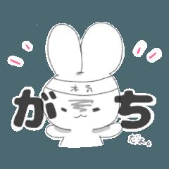 しじみ目ウサギの生活。その1
