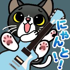 ギターにゃんこ
